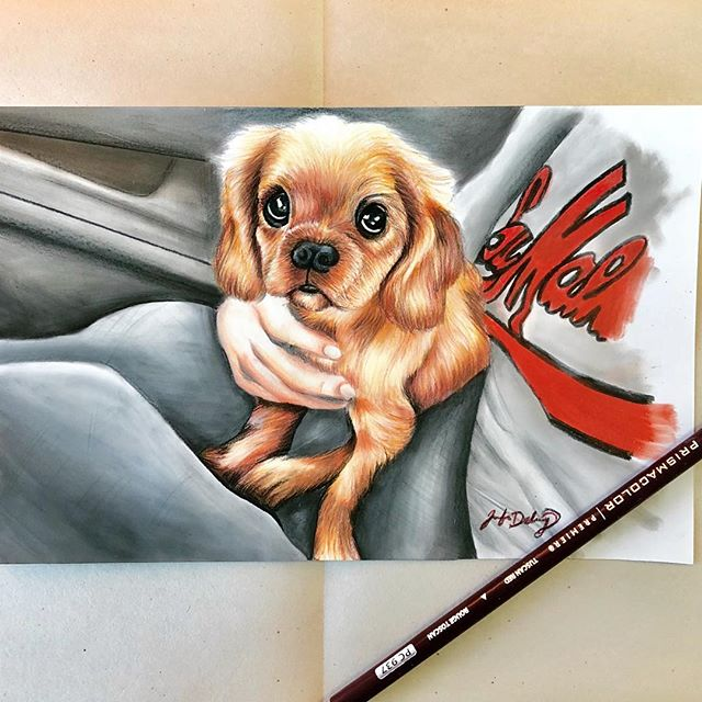 Lambeau 💚💛 #lambeaufield #packers #puppy #puppydrawing #dogdrawing #drawing #prismacolor #panpastel
