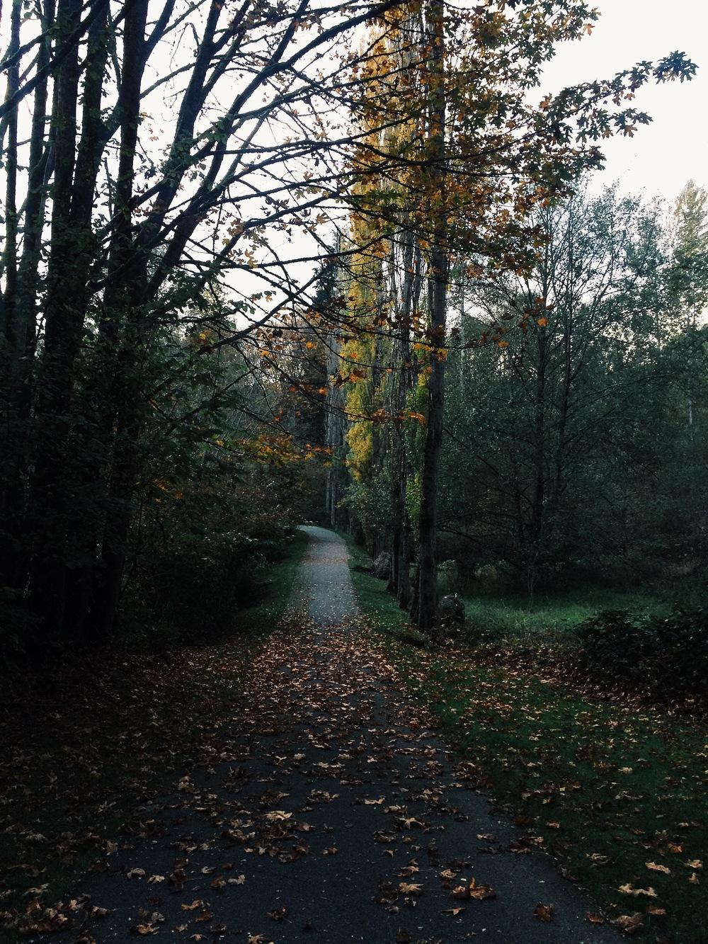 Fall in Washington (!)