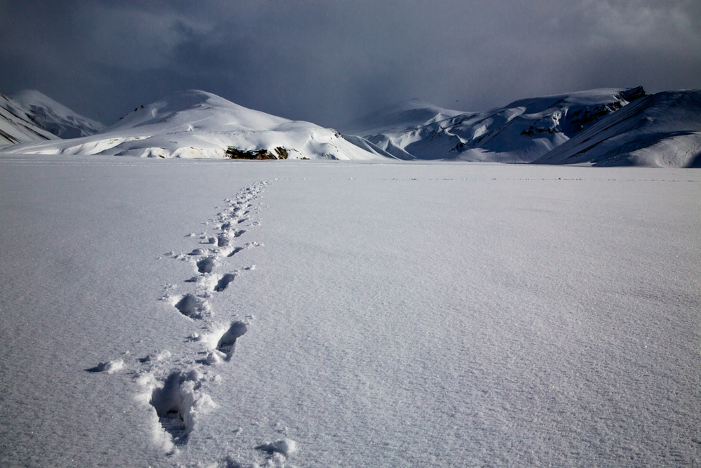 Landmannalaugur in winter