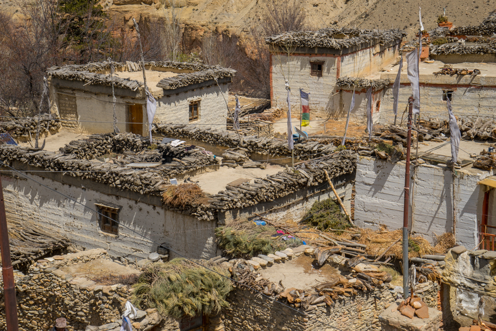Houses in Kingdom of Mustang