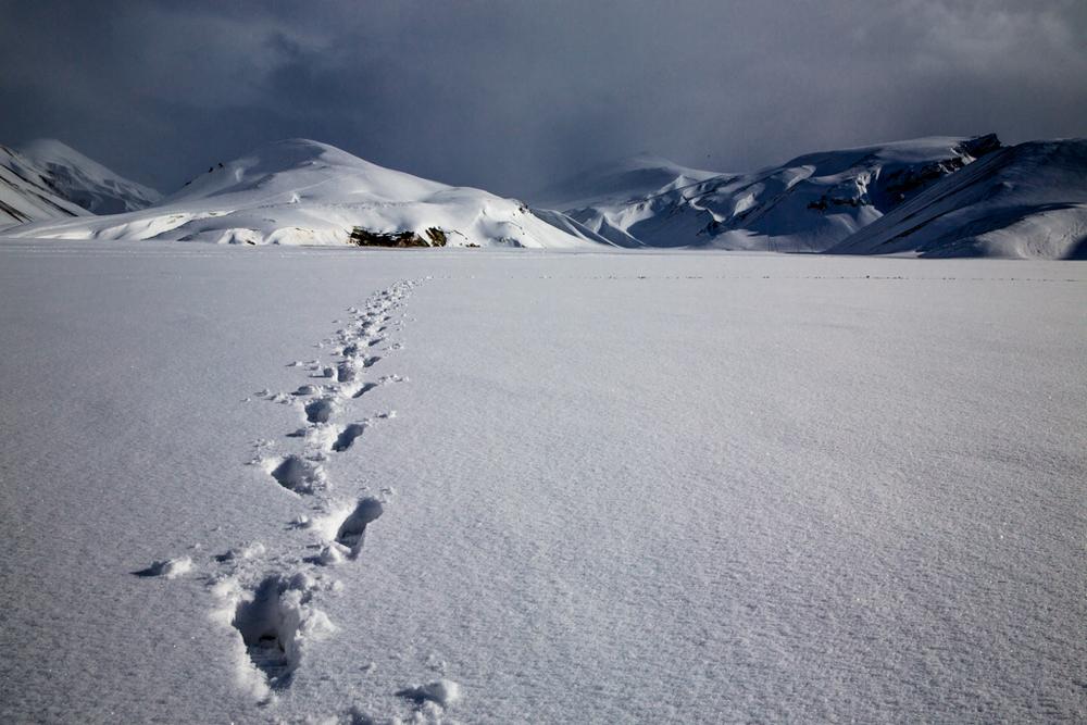 Footprints near Landmannalaugur