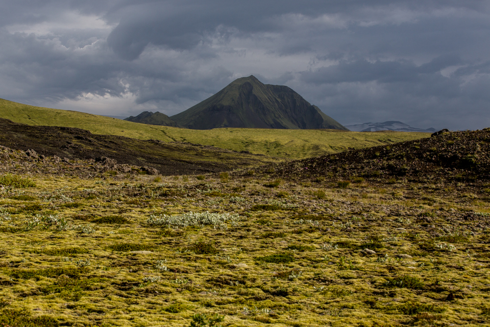 Green moss before a pyramid mountain