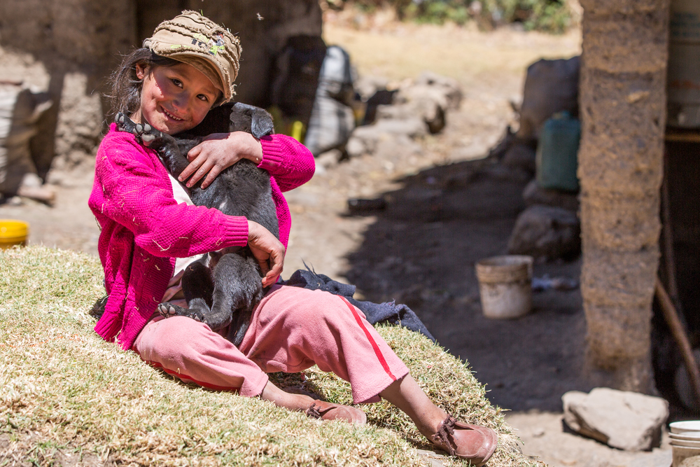 Little peruan child playing with dog puppy