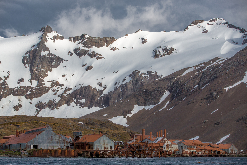 Whaling station seen from Zodiac cruise