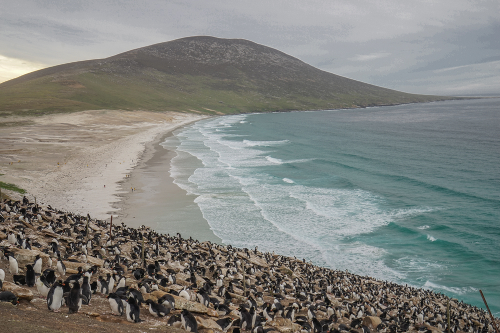 Saunders Island on the West Falklands