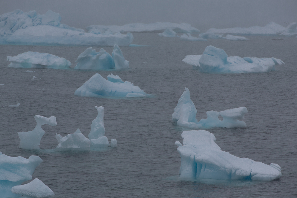 Formations of ice floes