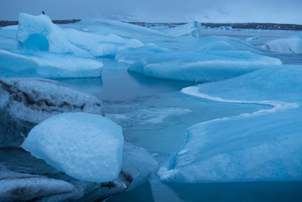 Icebergs on Jökulsarlon