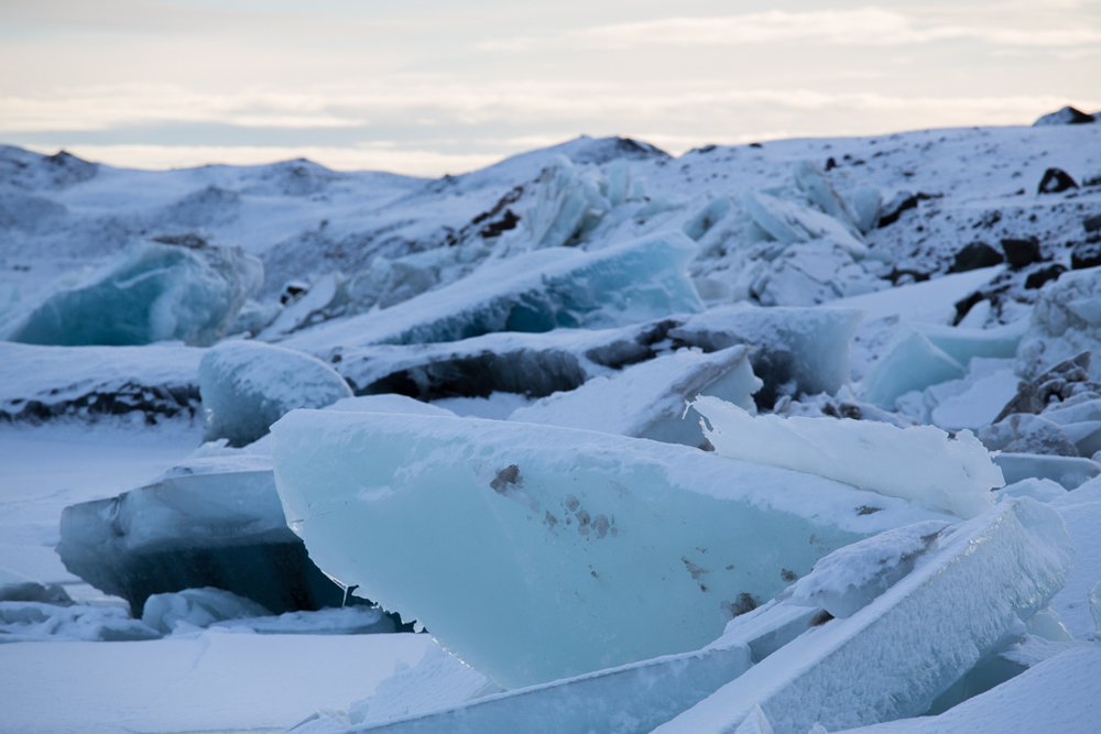 Crystal ice gathering on the edge of Jökulsarlon