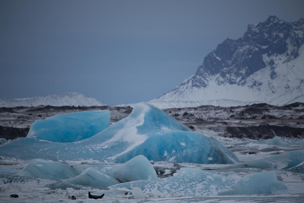 Blue ice in the distance on Jökulsarlon