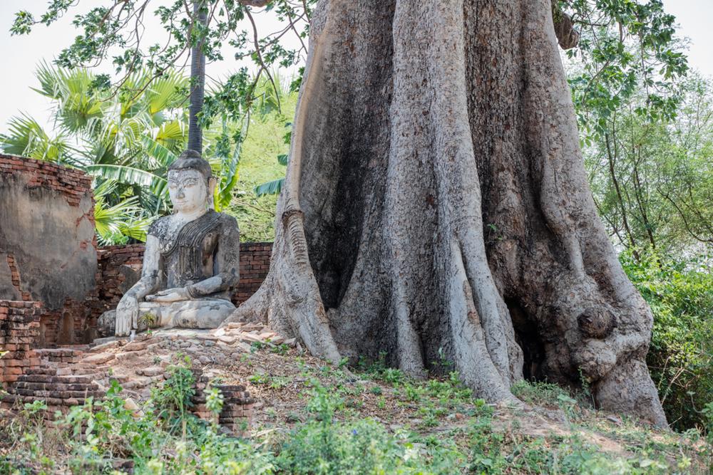Buddha in Inwa