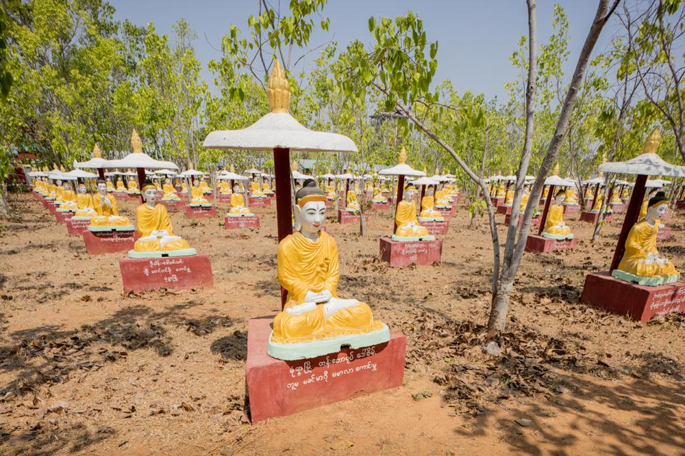 Buddhas everywhere