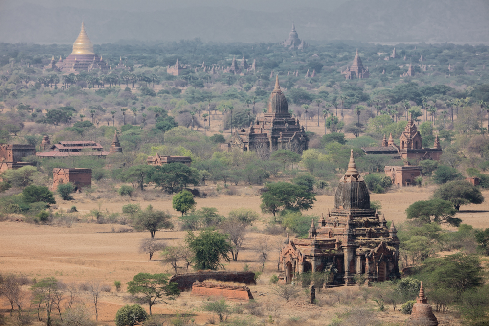 Afternoon picture in Bagan