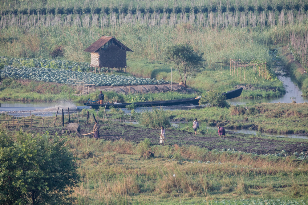 Farming close to Inle Lake