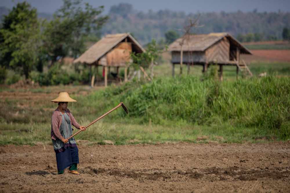Farmer in Myanmar