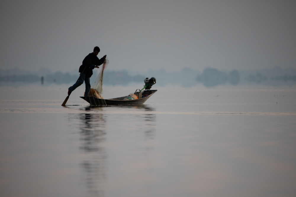 One leg rower of Inle Lake