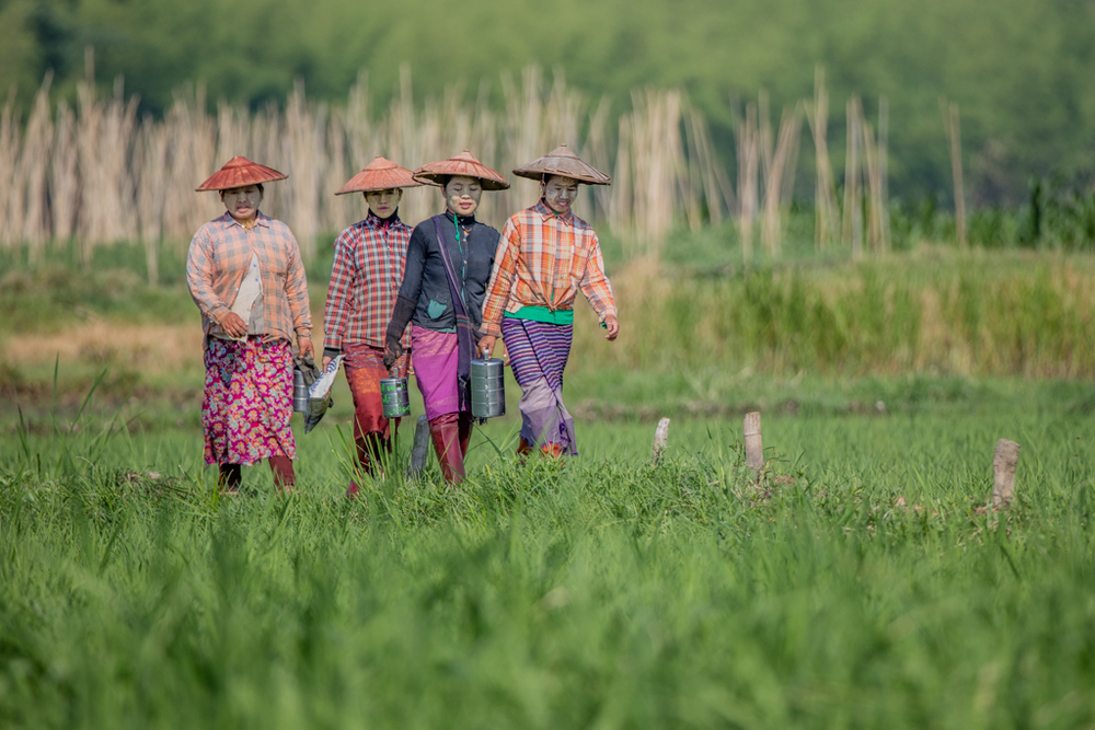 Farmers seen from Inle Lake