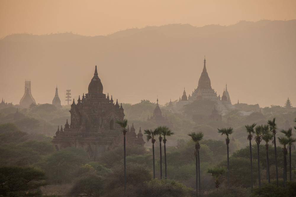 Palms and temples in Bagan