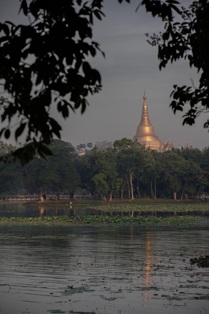 Shwedagon Pagoda from Kandawgyi Park