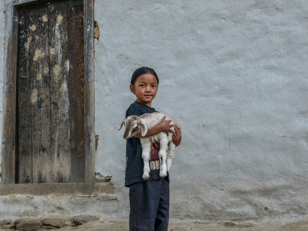 Nepalese child with goat