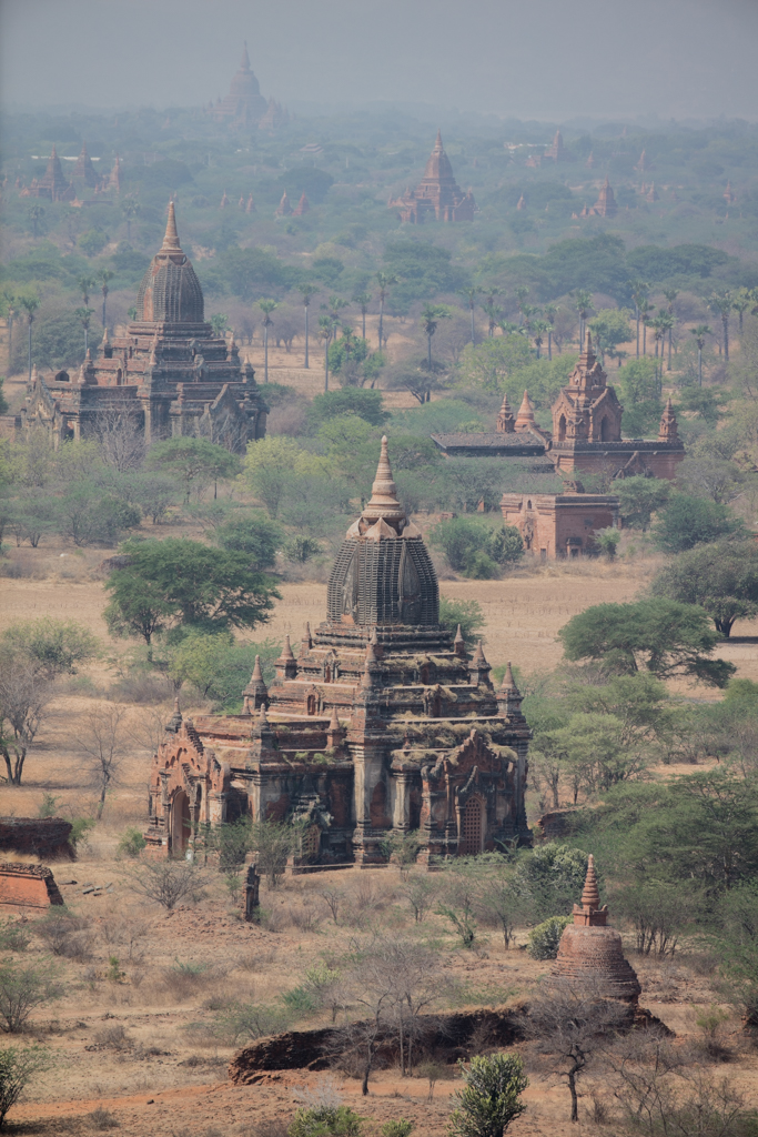 Line of temples in Bagan