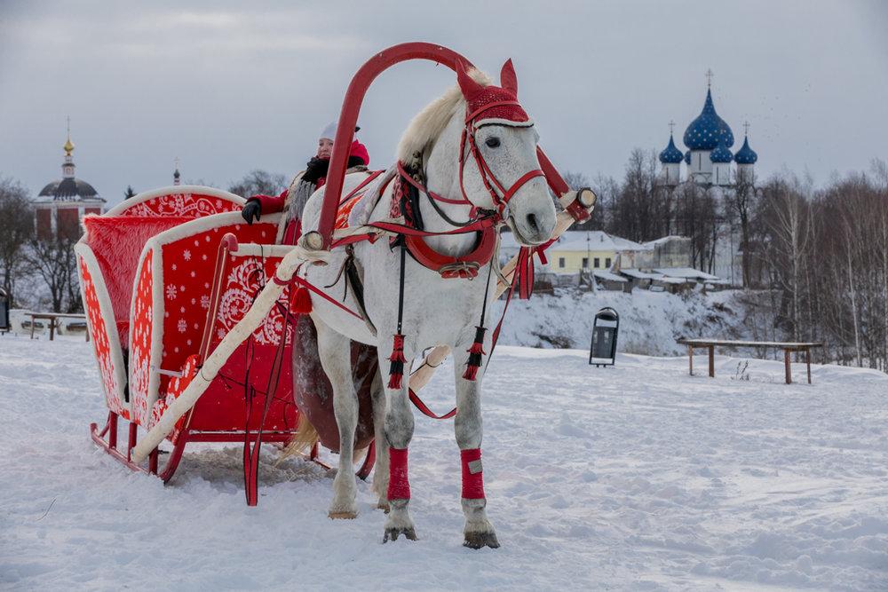 Golden_Ring_Russia_29.jpg