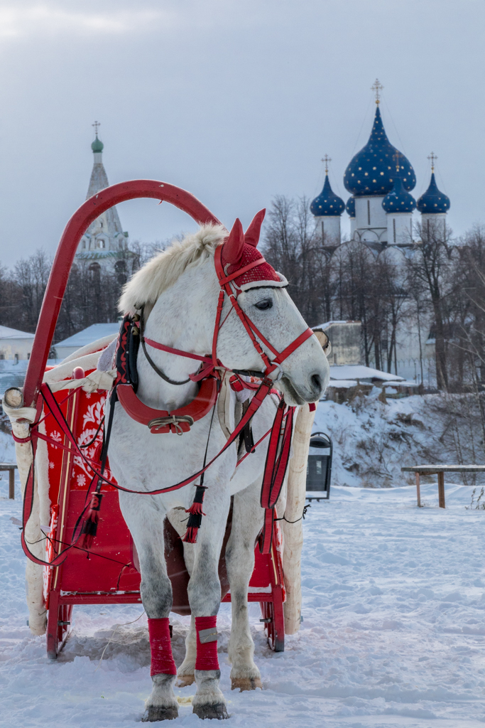 Golden_Ring_Russia_31.jpg
