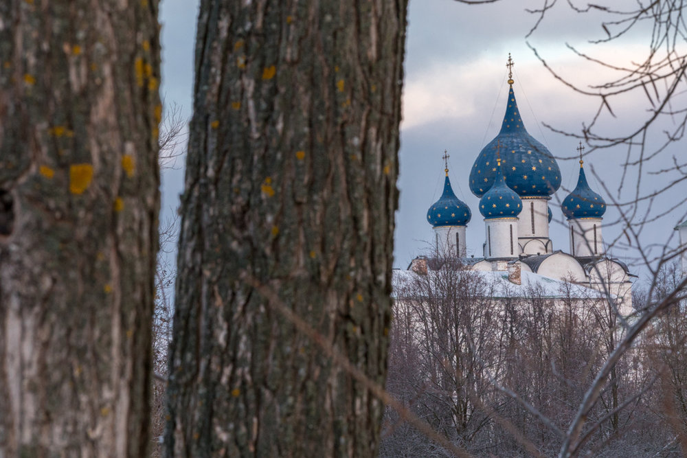 Golden_Ring_Russia_36.jpg