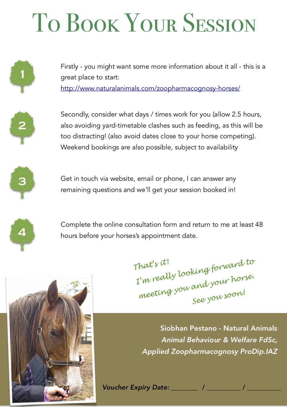 A5 NA Equine Gift Certificate P2.jpeg
