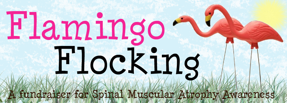 flamingo_flocking_revised.png