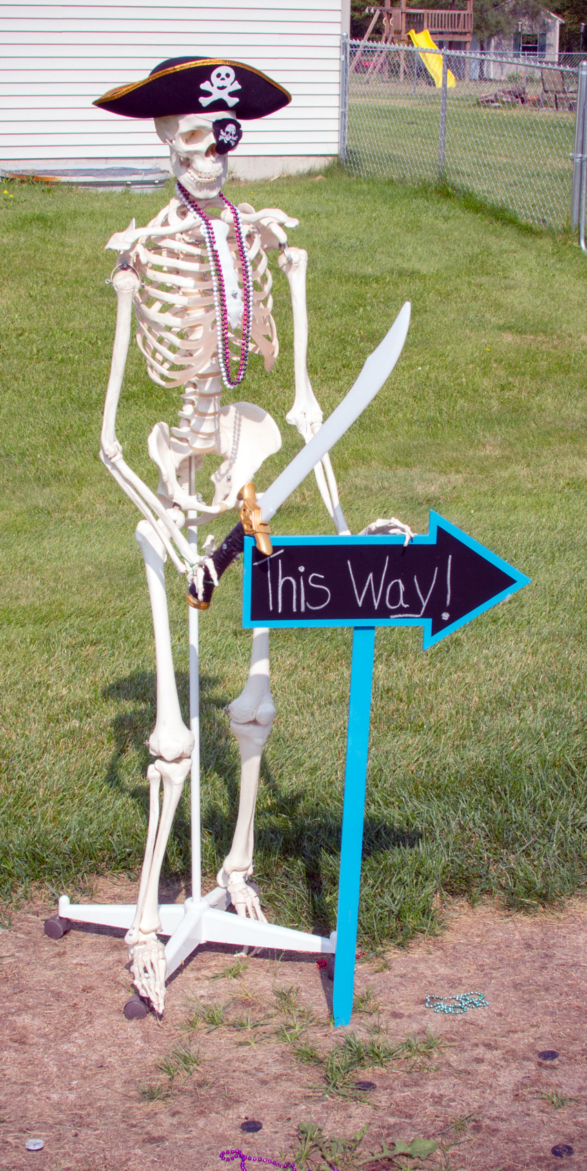 skeleton_IMG_7854.jpg
