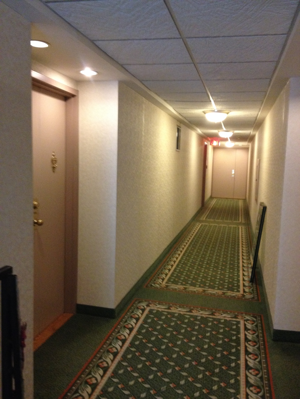 Existing Penthouse Corridor