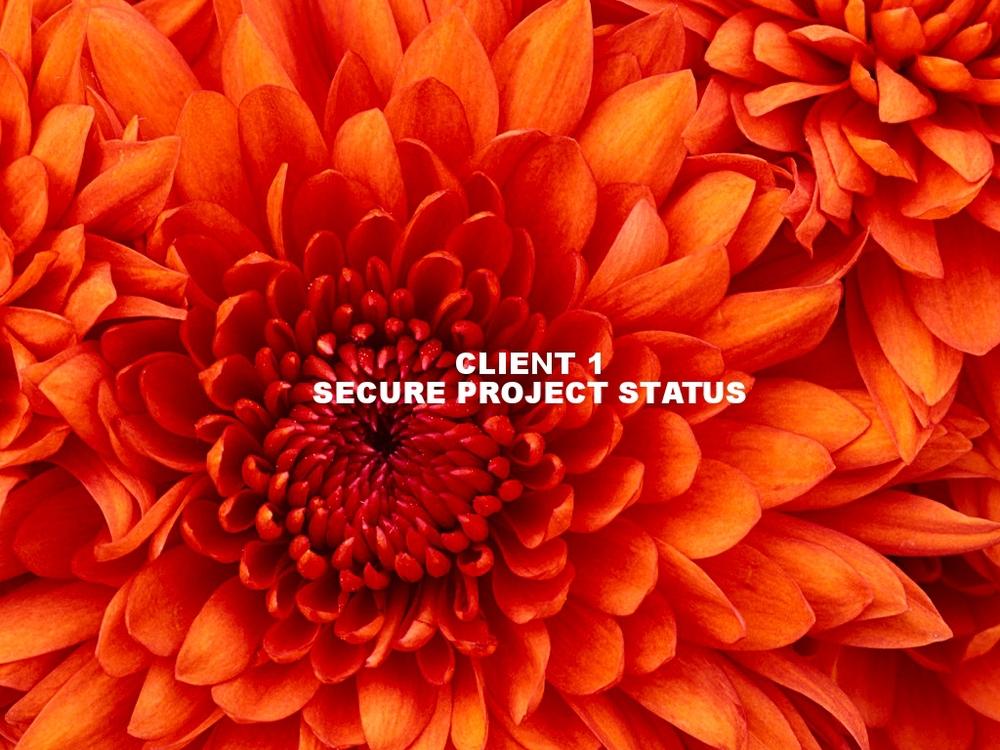 Client 1 Secure Project Status