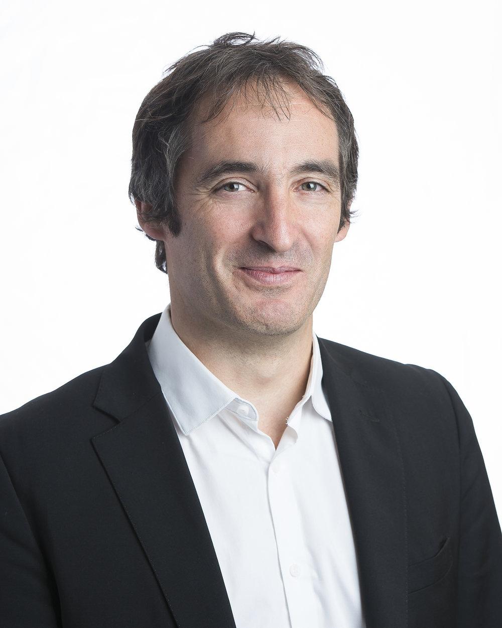 Luc Bodiguel, Directeur de recherche,CNRS, Université de Nantes, France