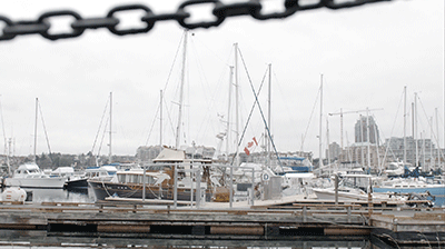 Victoria_Harbour.png