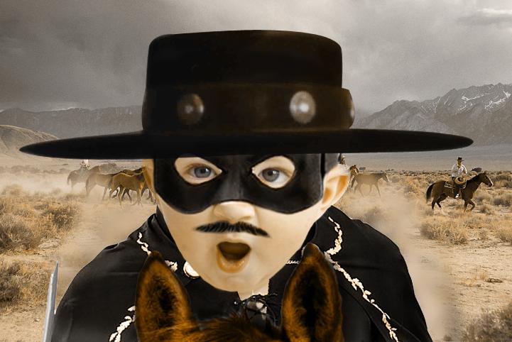 Bebe-Zorro.jpg