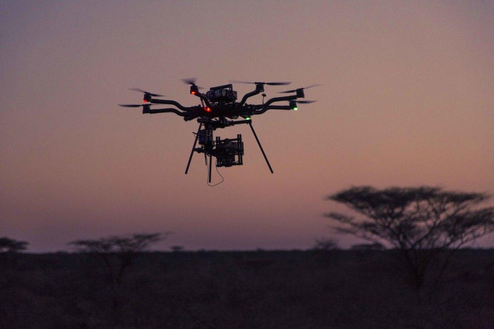 Freefly Snowbird - Kenya 02_lq.jpg