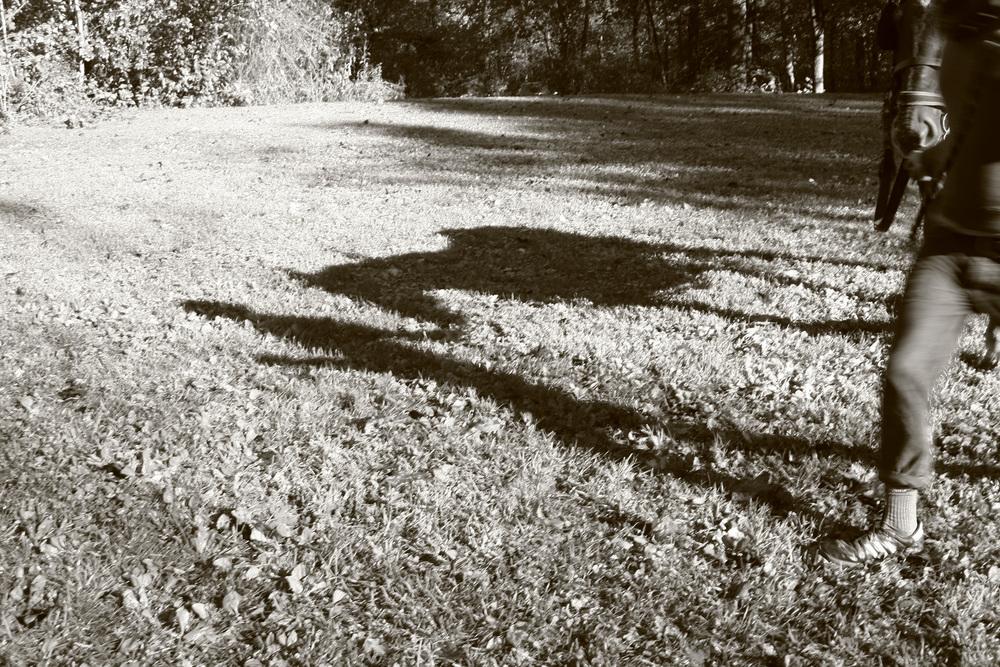 Earthaven6.jpg