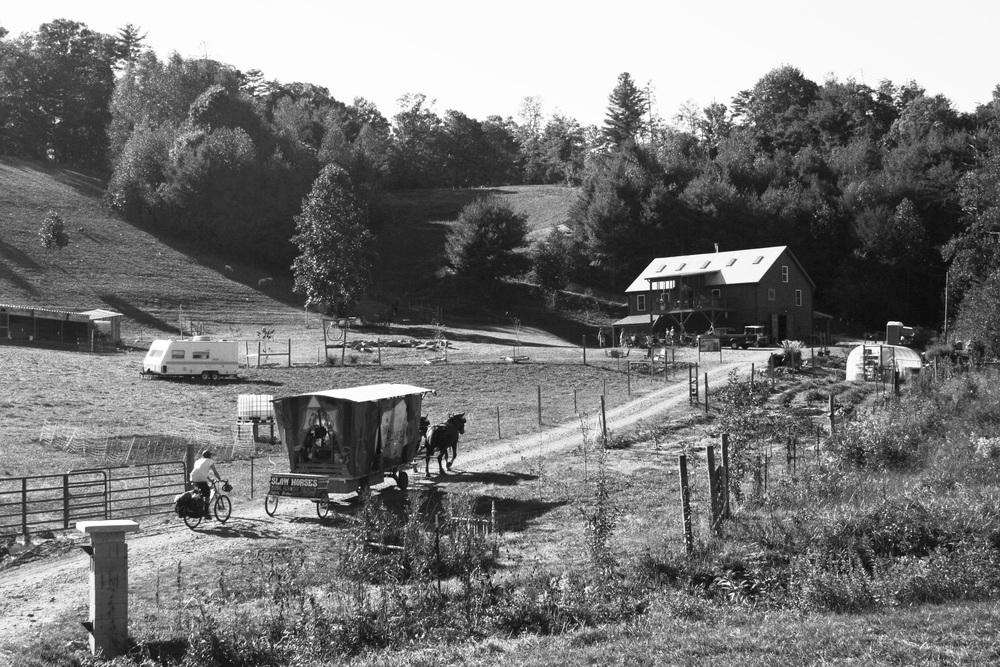 Franny's Farm.jpg