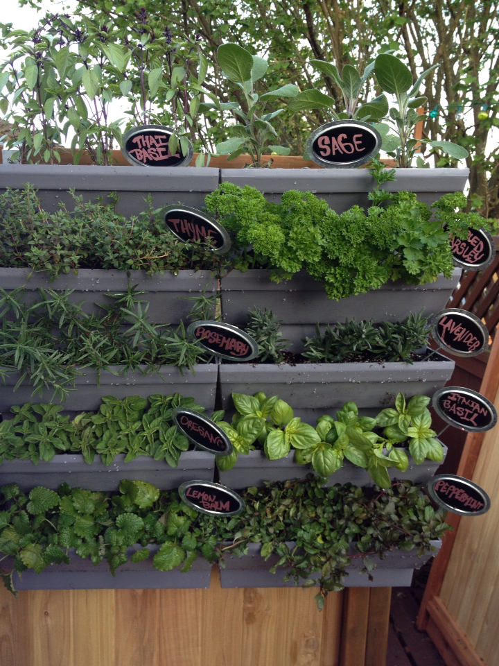 Elegant Condo Kit / Outdoor Railing Hanger Kit With Standard Self Watering Planters
