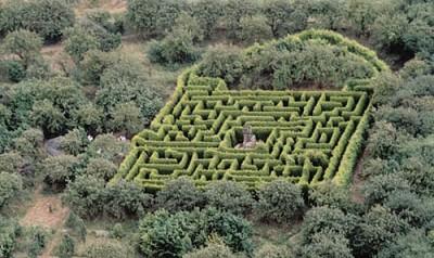hoo hill maze aerial