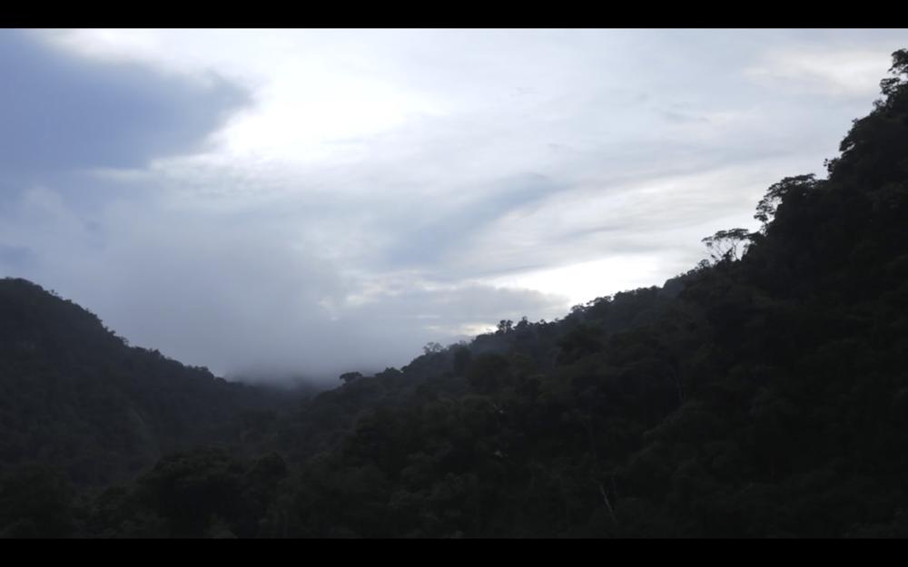 Screen Shot 2016-12-13 at 4.27.43 PM.png