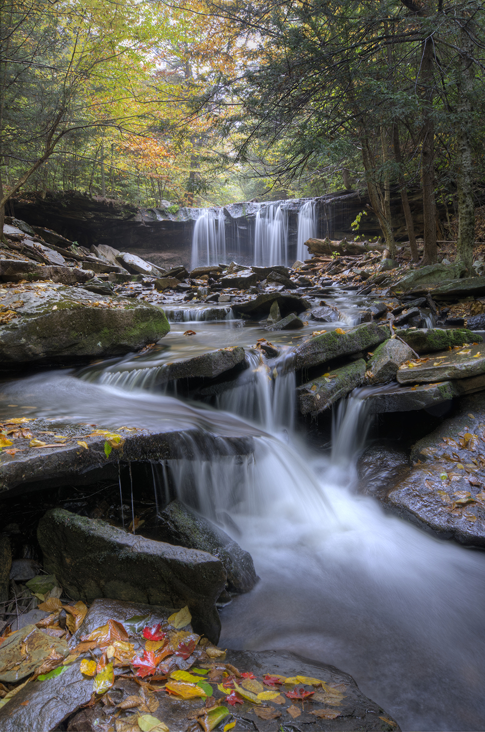 Ricketts Glen Waterfall 3