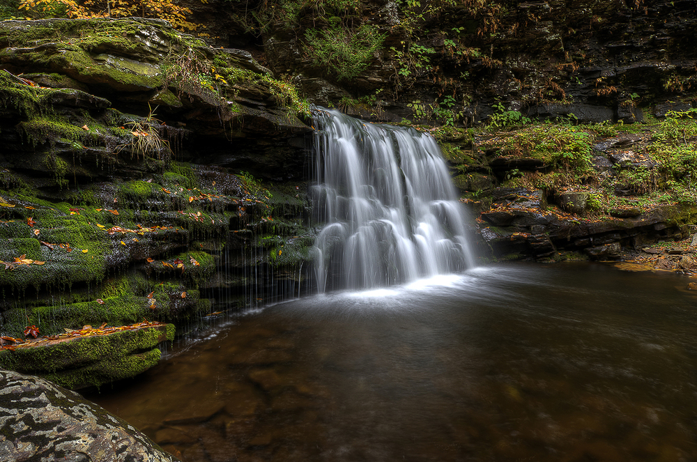 Ricketts Glen Waterfall 2