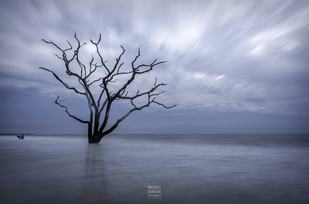 Serenity - Botany Bay Plantation by Michael Donahue