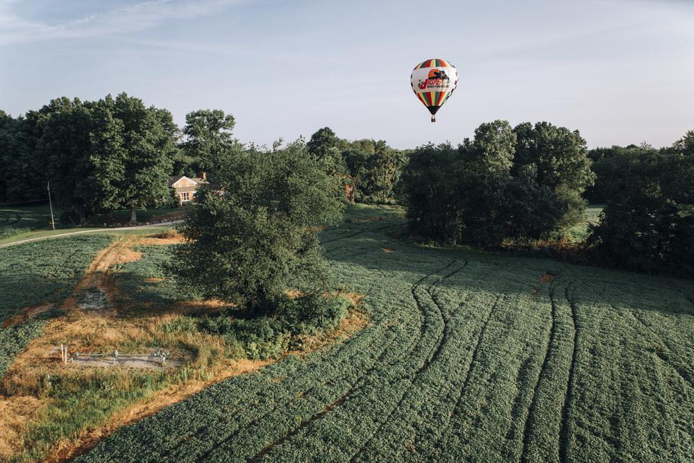 BalloonClassic_56.jpg