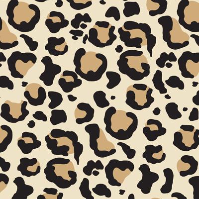 Leopard print spa headband bella il fiore leopard print spa headband thecheapjerseys Choice Image