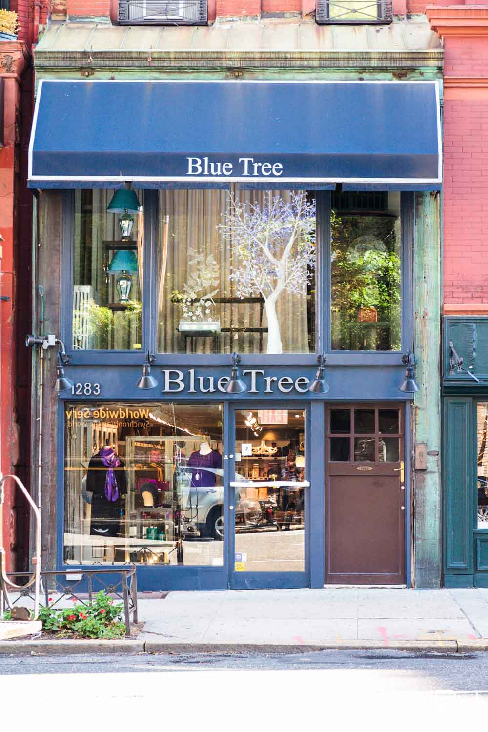 Blue Tree - Interior Photographer San Francisco JBJ Pictures-5.jpg