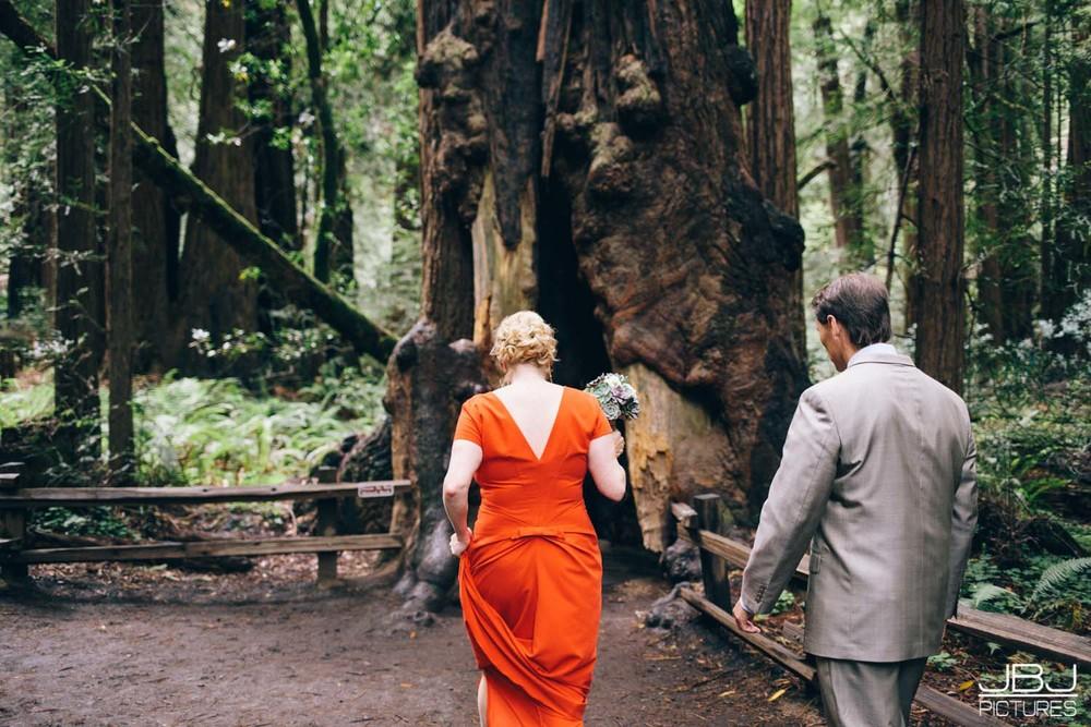 Wedding Muir Woods by JBJ Pictures Professional Wedding Photographer San Francisco.jpg