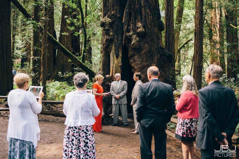 Wedding Muir Woods by JBJ Pictures Professional Wedding Photographer San Francisco-2.jpg