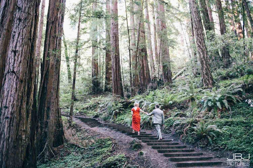 Wedding Muir Woods by JBJ Pictures Professional Wedding Photographer San Francisco-26.jpg